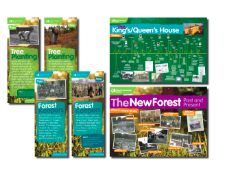 New Forest County Show – new project