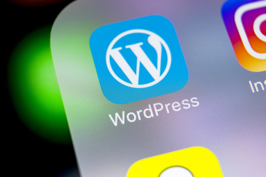 WordPress websites need updates – shocker!